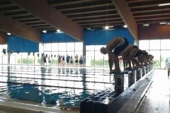 Gara Nuoto 3